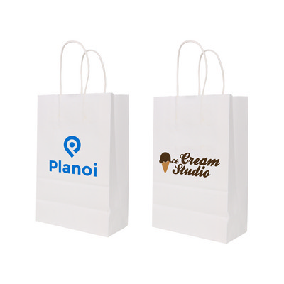 Picture of Twisted Handle Kraft Paper Bag (220x160x80mm)