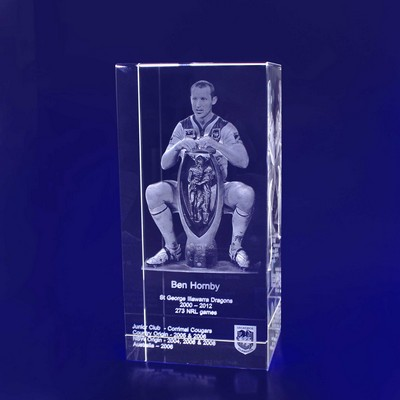 Picture of 3D Crystal Rectangle award / trophy