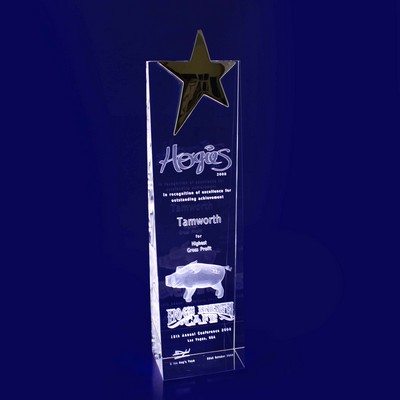 Picture of 3D Crystal Star Wedge award / trophy