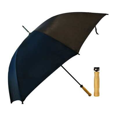 Picture of Budget Umbrella