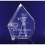 3D Crystal Prestige award / trophy